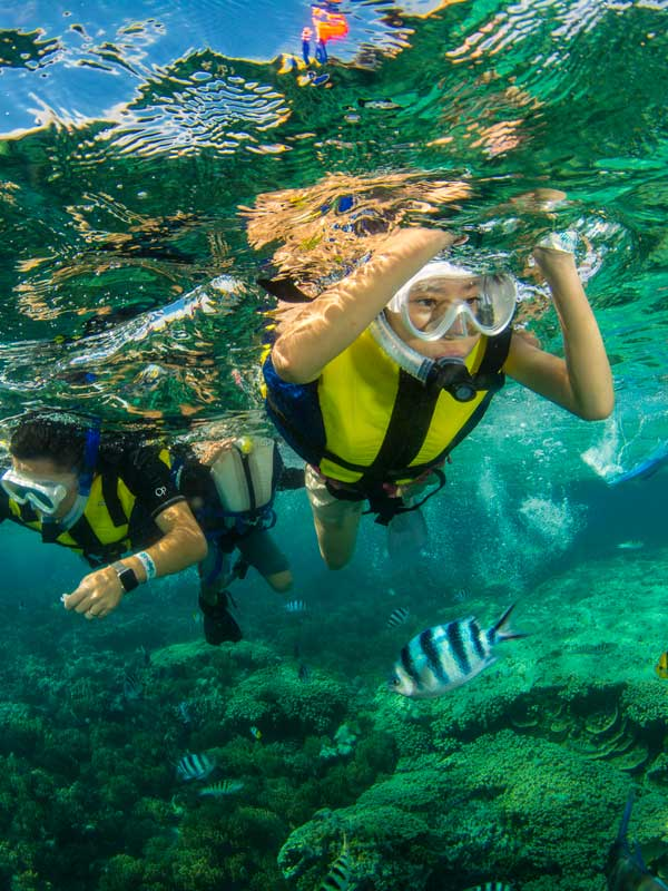 Piti Bay Marine Preserve Eco Snorkeling Tour